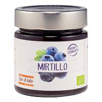 COMPOSTA MIRTILLO 250G
